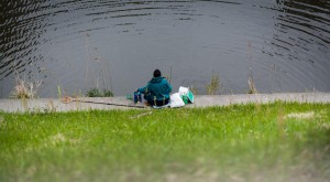 2016 田川浦湖ヘラブナ釣り