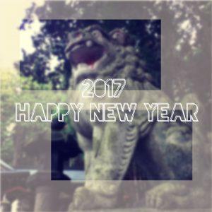新年明けましておめでとうございます!2017年の開始です!