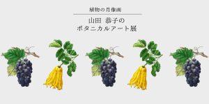 植物の肖像画 山田恭子のボタニカルアート展