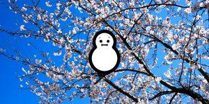 4月でも降雪!塩尻市に雪が降りました